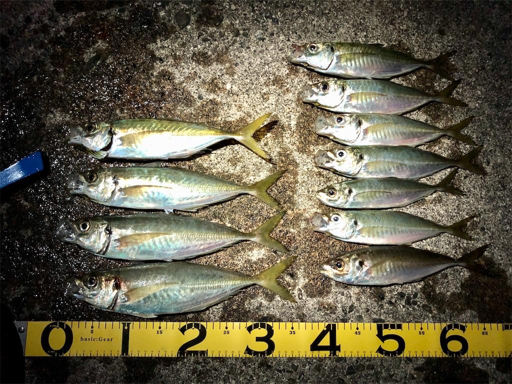 f:id:fishing-aquarium:20200210191330j:image