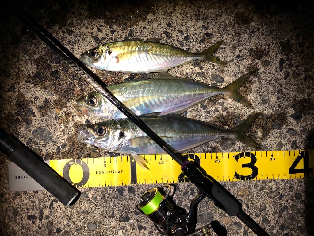 f:id:fishing-aquarium:20200307165740j:image