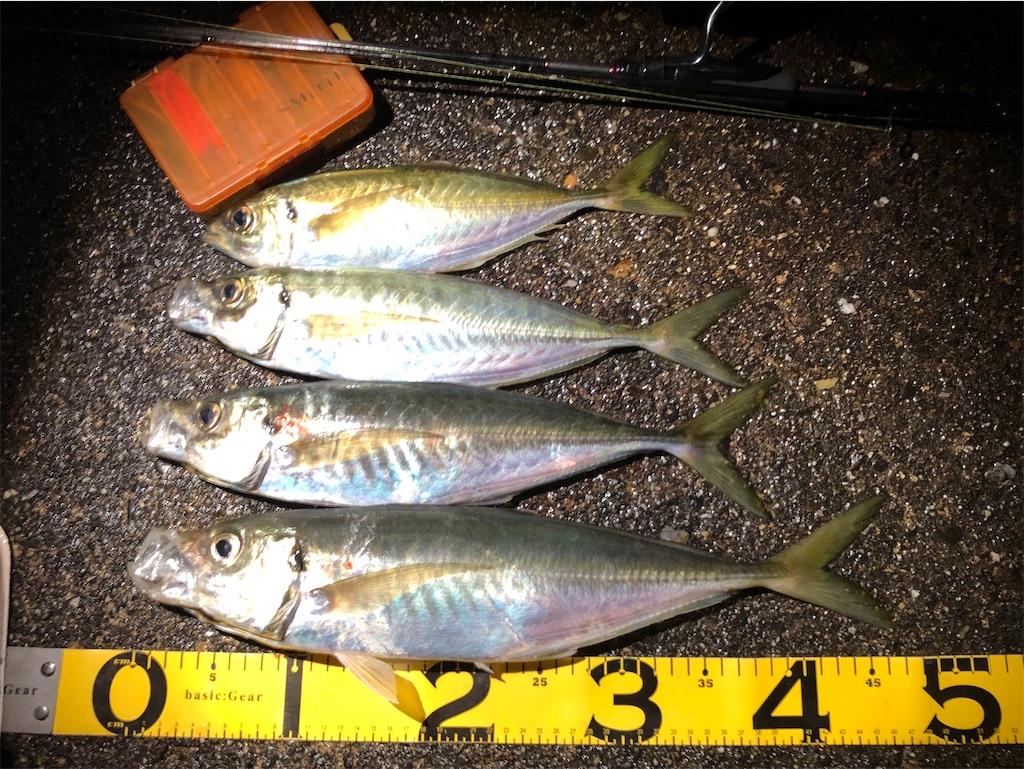 f:id:fishing-aquarium:20200322170347j:image
