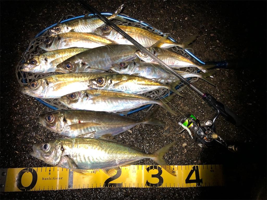 f:id:fishing-aquarium:20200402124600j:image