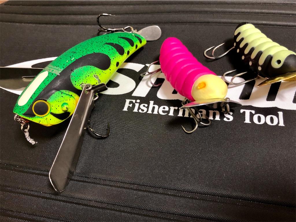 f:id:fishing-aquarium:20200710112901j:image