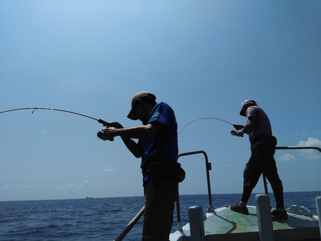 f:id:fishing-aquarium:20200826113548j:image