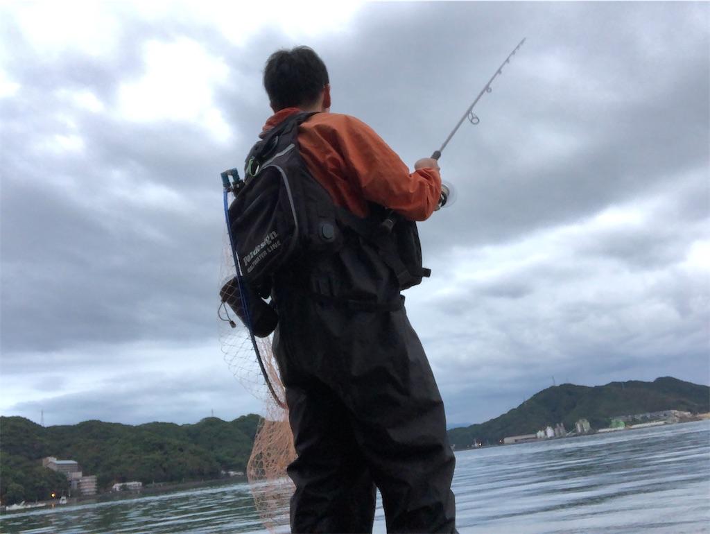 f:id:fishing-aquarium:20201002180819j:image