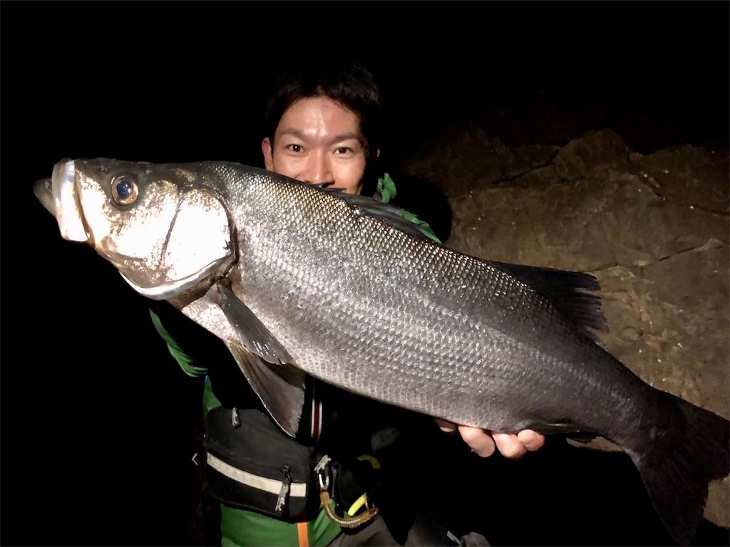 f:id:fishing-aquarium:20210327154927j:image