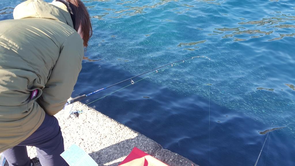 f:id:fishing-go:20170202232420j:plain