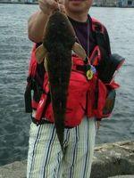 f:id:fishing49:20170408230741j:plain