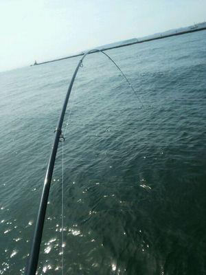 f:id:fishing49:20170611224047j:plain