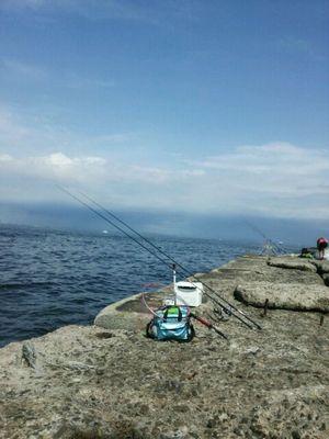 f:id:fishing49:20170730203530j:plain