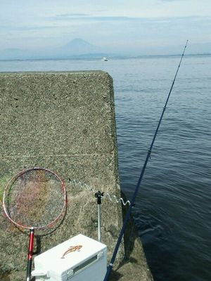 f:id:fishing49:20170827213427j:plain