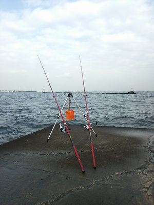 f:id:fishing49:20180122214931j:plain