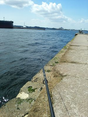 f:id:fishing49:20180603192128j:plain