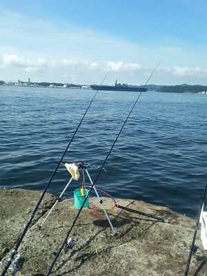 f:id:fishing49:20180610194925j:plain