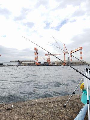 f:id:fishing49:20181105101209j:plain