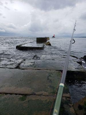 f:id:fishing49:20190623222958j:plain