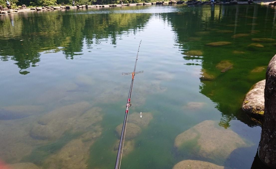 f:id:fishing_tanuki:20200822204414j:plain
