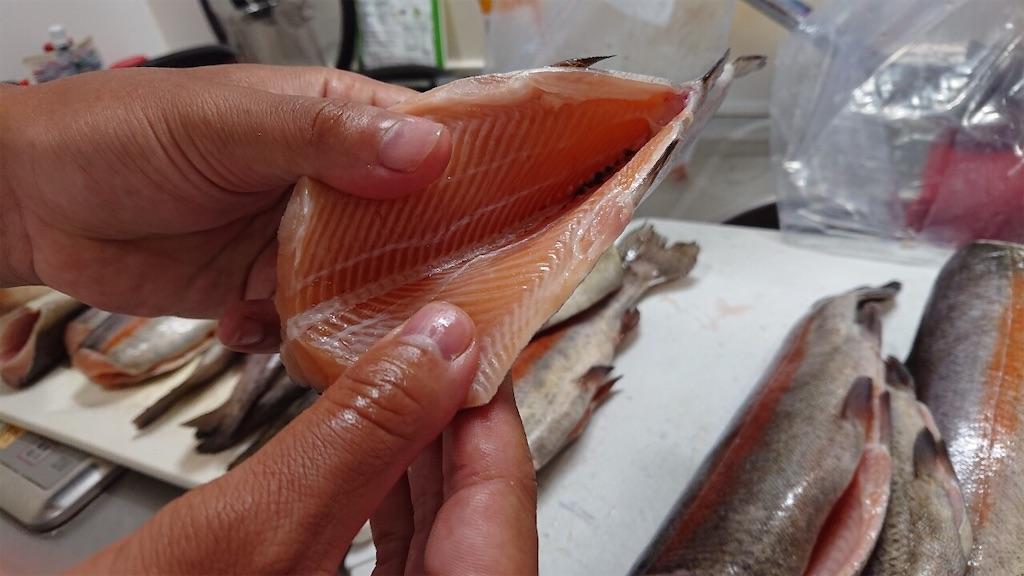 f:id:fishing_tanuki:20200903213901j:plain