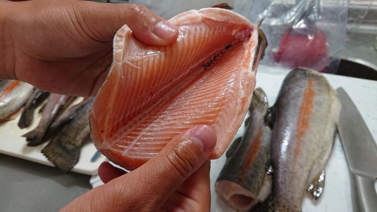 f:id:fishing_tanuki:20200909212951j:plain