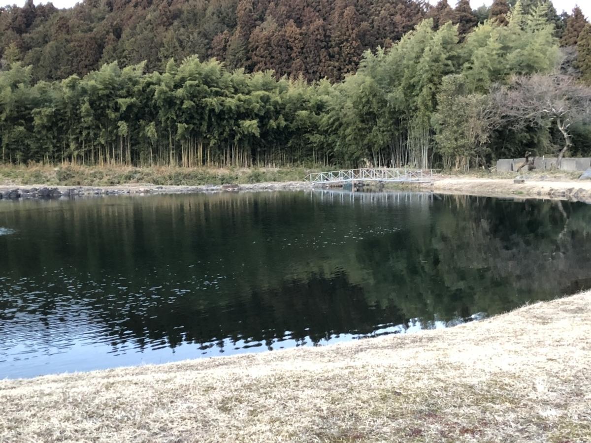 f:id:fishing_tanuki:20210220130211j:plain