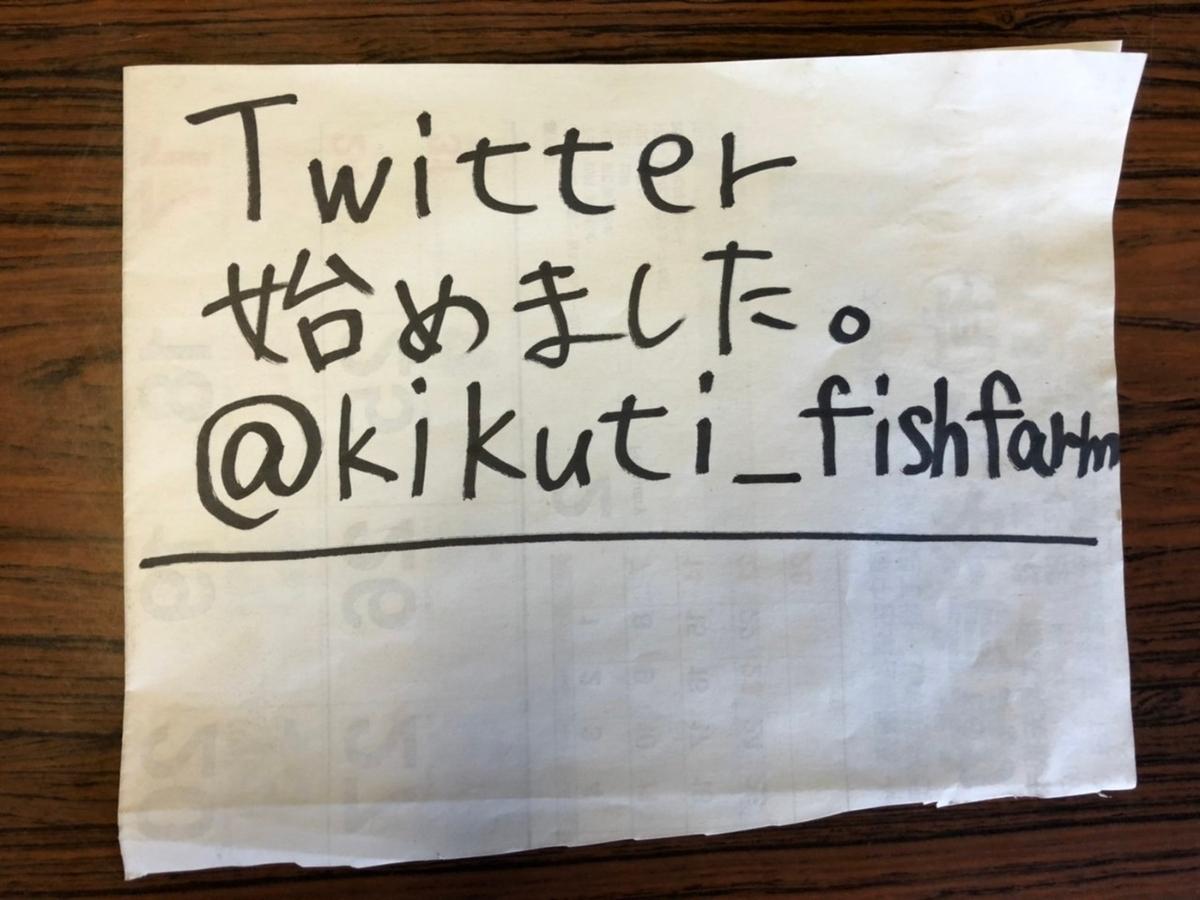 f:id:fishing_tanuki:20210220131014j:plain