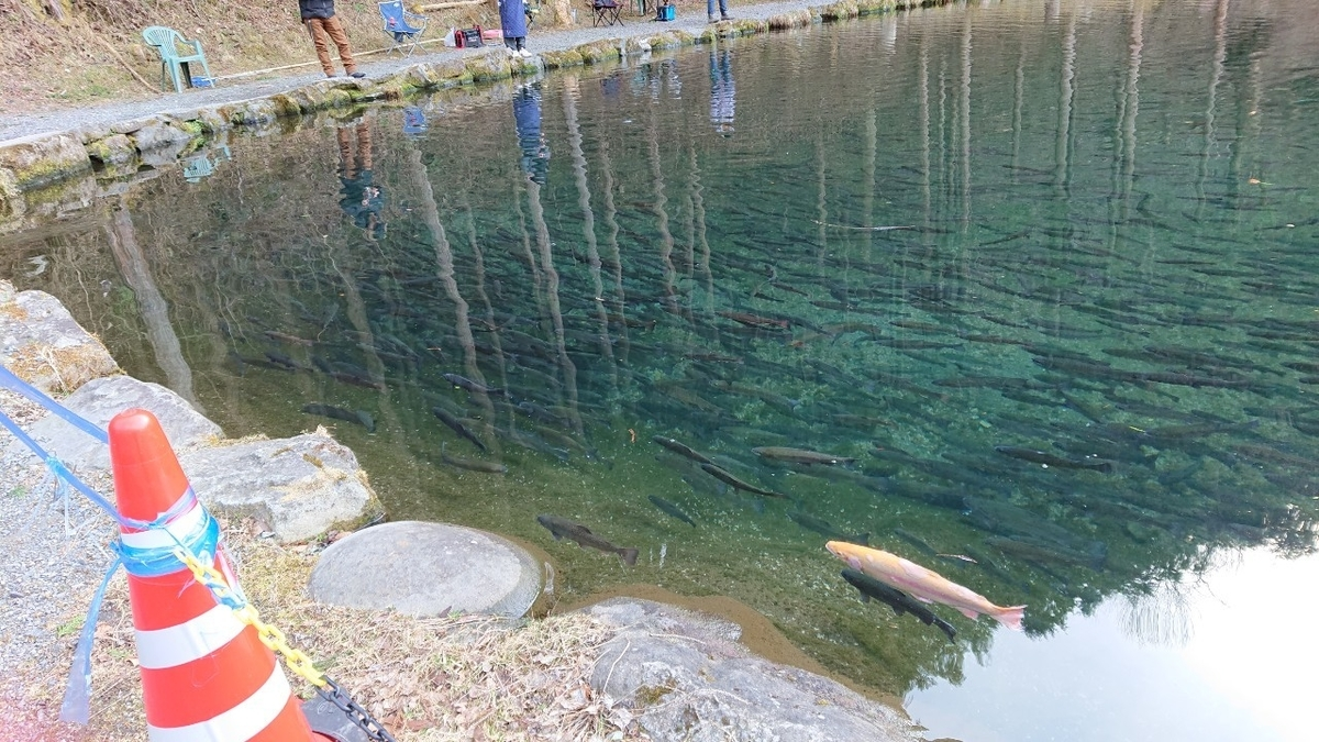 f:id:fishing_tanuki:20210227100745j:plain