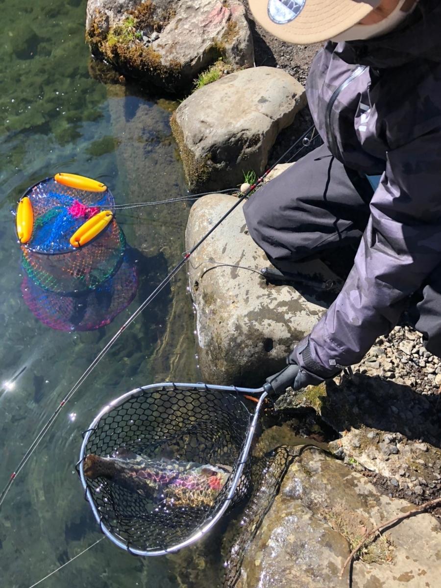 f:id:fishing_tanuki:20210303192341j:plain
