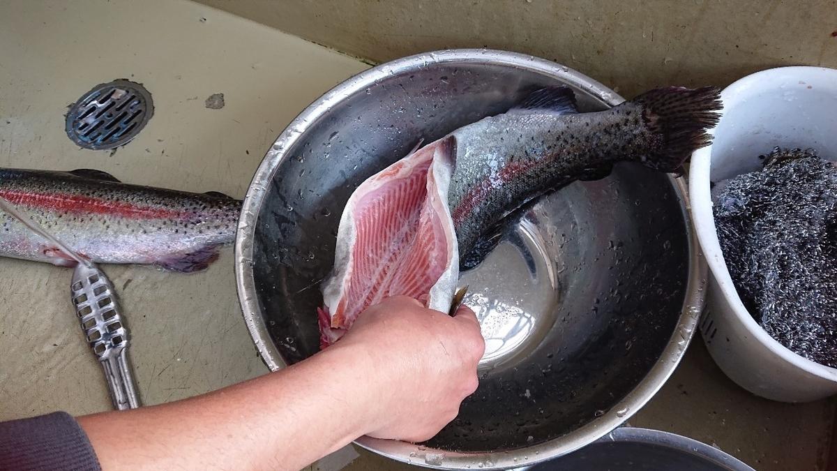 f:id:fishing_tanuki:20210303200751j:plain