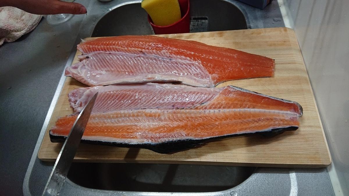 f:id:fishing_tanuki:20210305212942j:plain