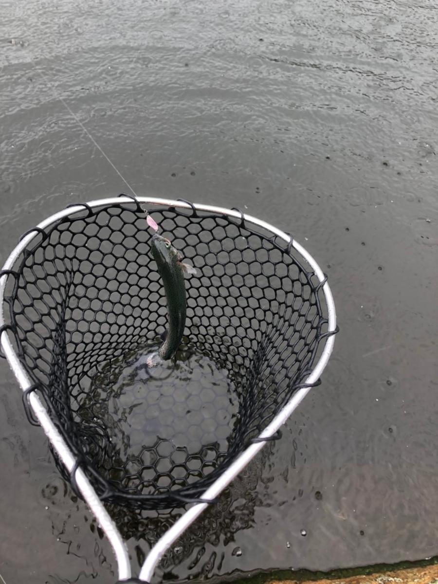 f:id:fishing_tanuki:20210314205338j:plain