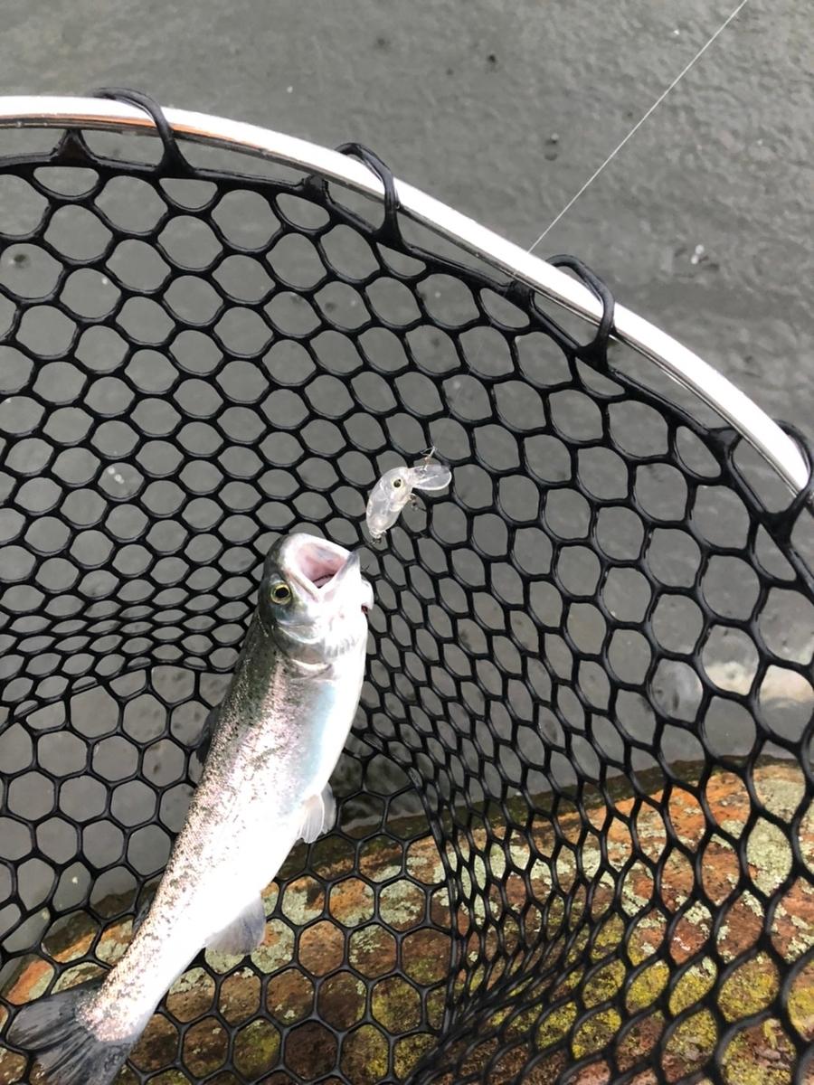 f:id:fishing_tanuki:20210314205444j:plain