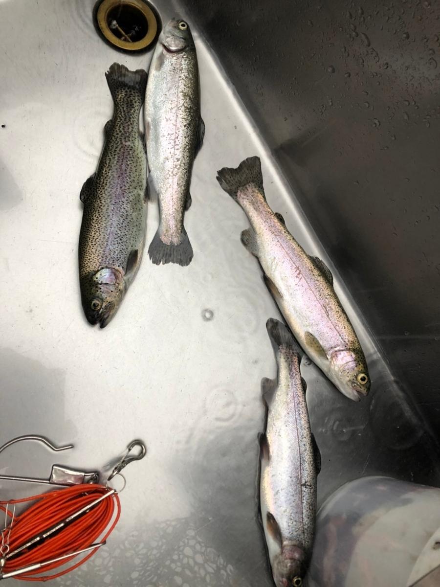 f:id:fishing_tanuki:20210314205739j:plain