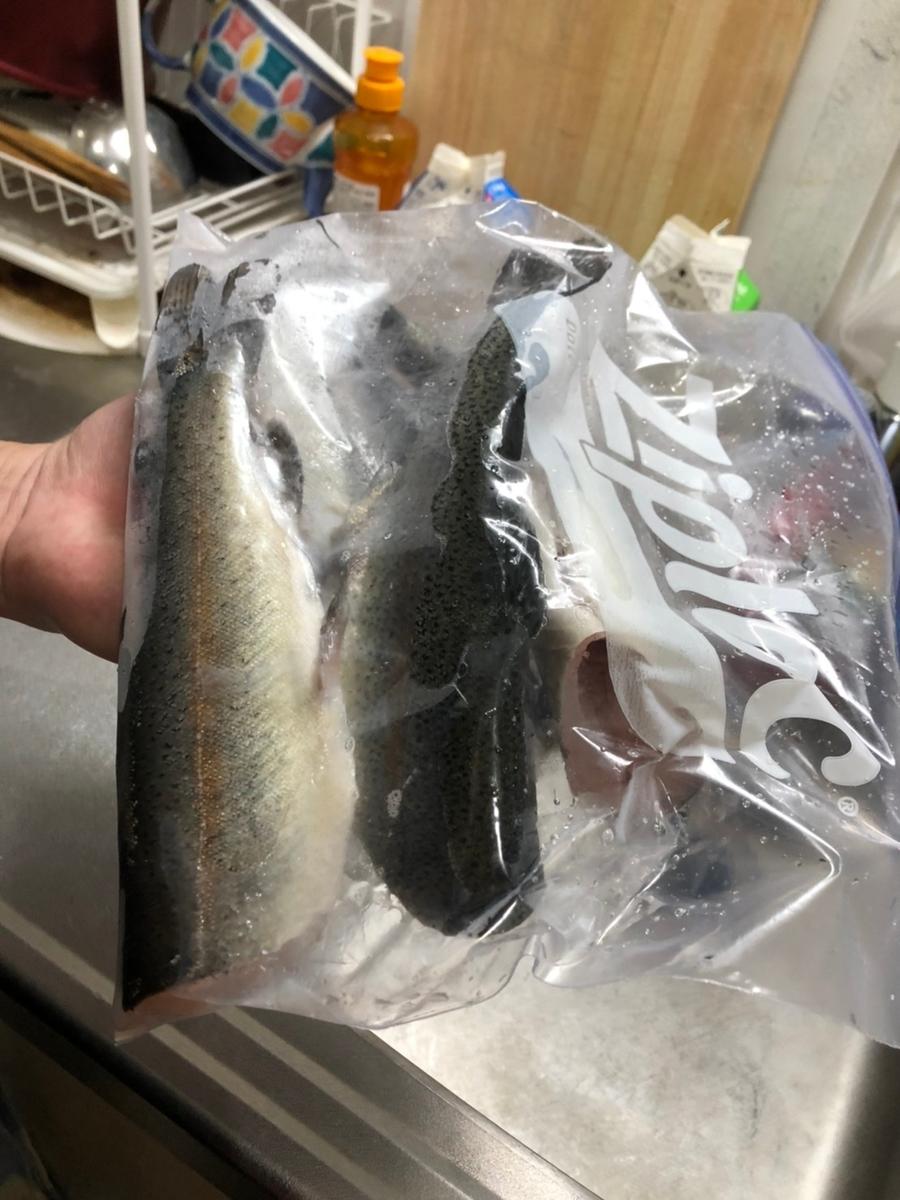 f:id:fishing_tanuki:20210316011744j:plain