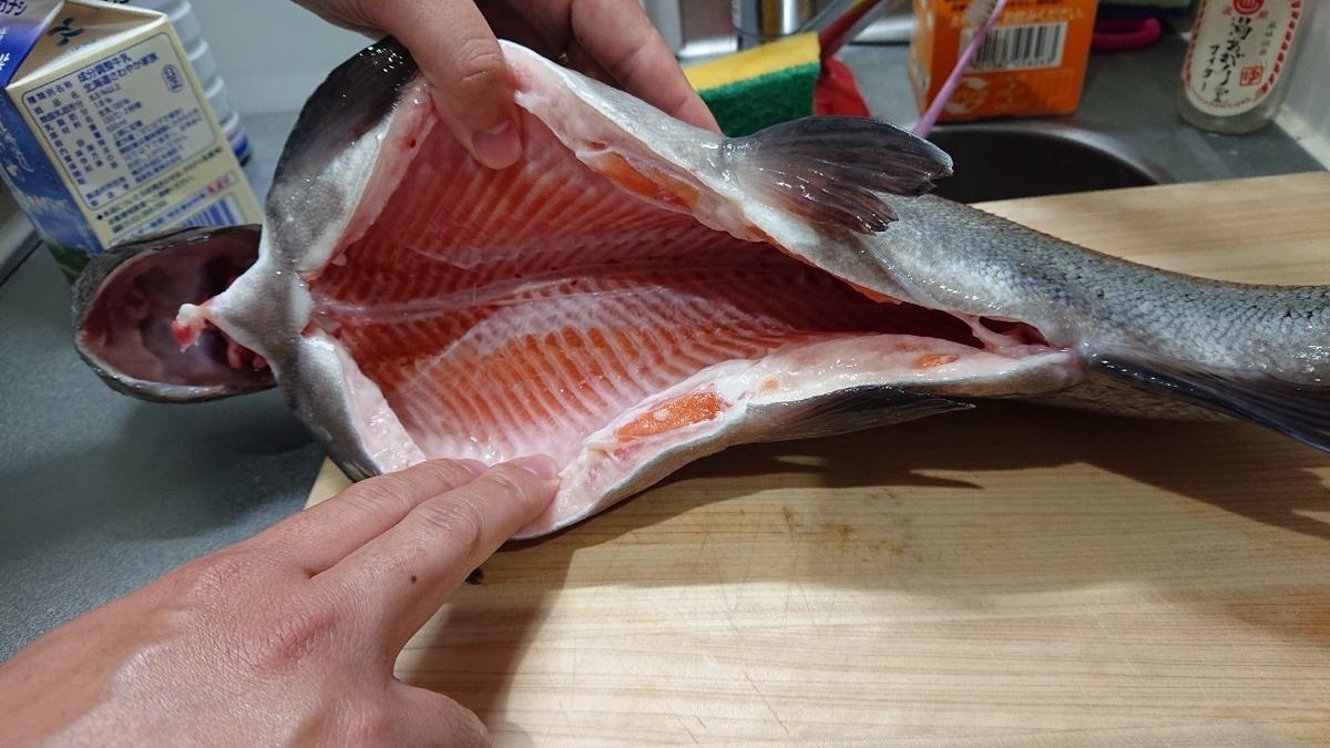 f:id:fishing_tanuki:20210327212632j:plain