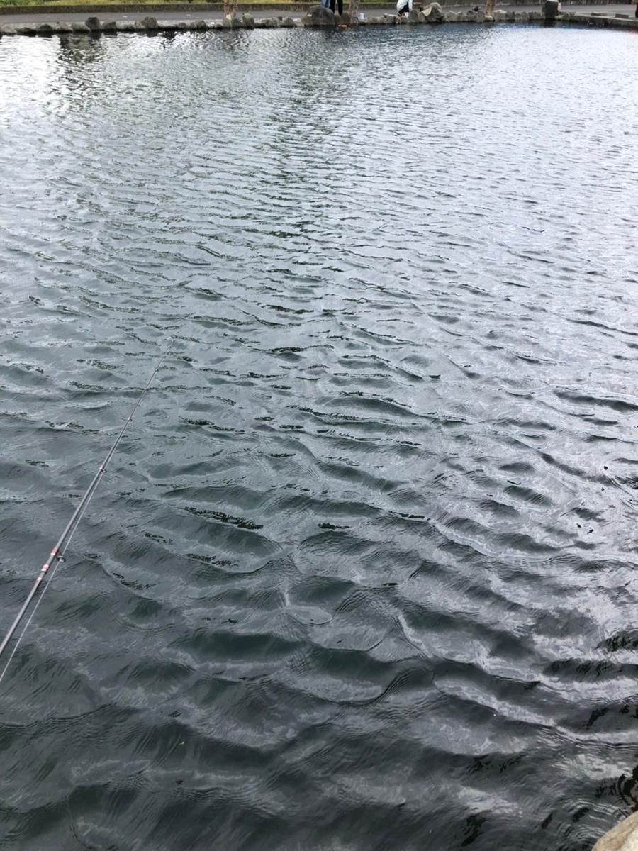 f:id:fishing_tanuki:20210408210004j:plain