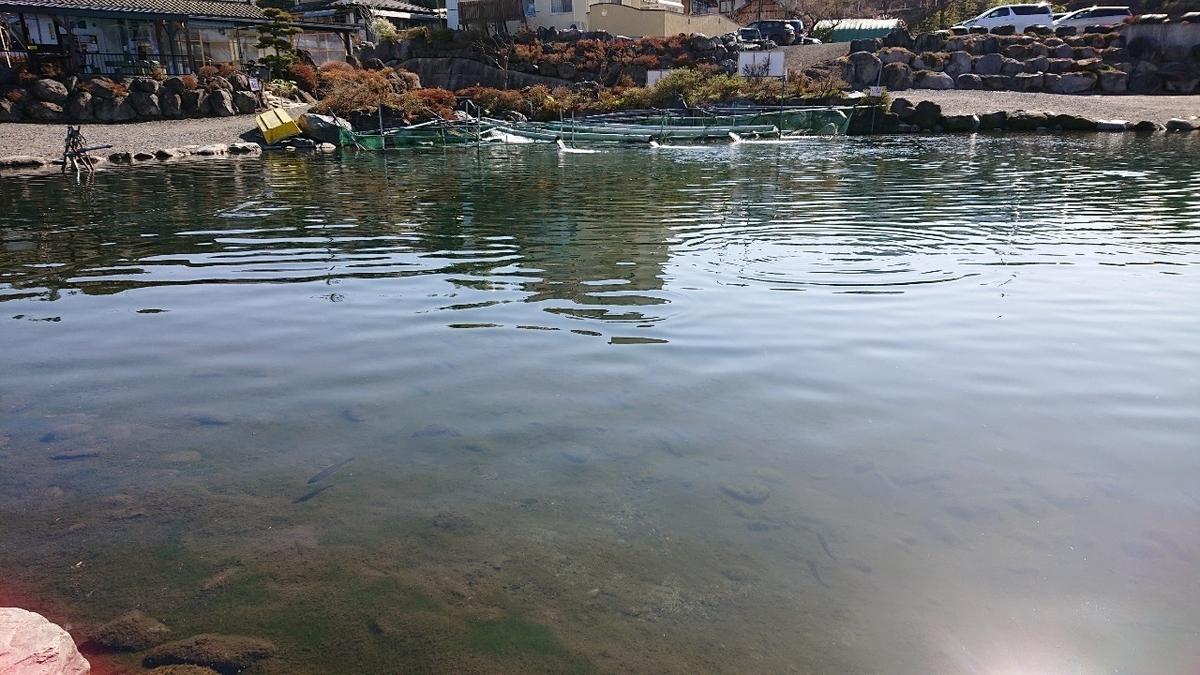 f:id:fishing_tanuki:20210414214001j:plain