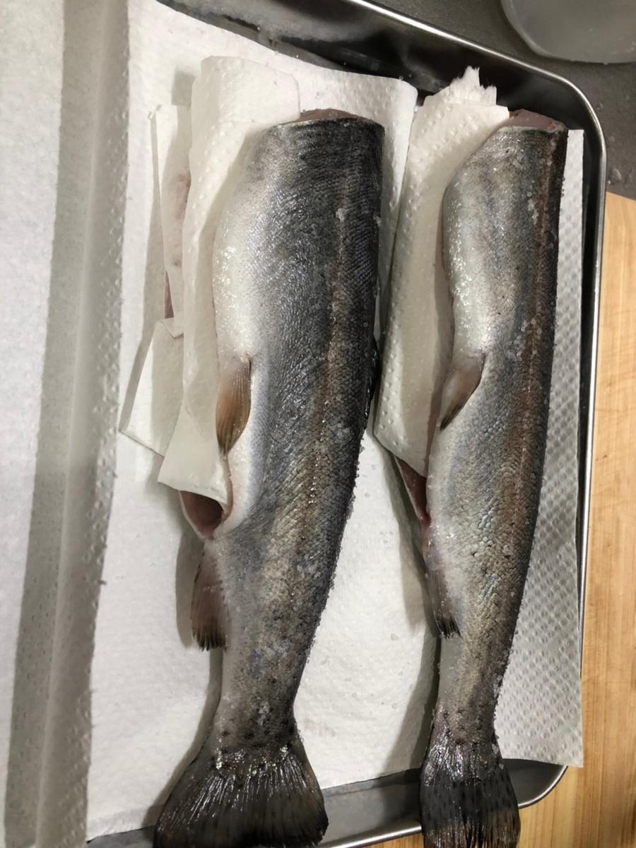 f:id:fishing_tanuki:20210418210259j:plain