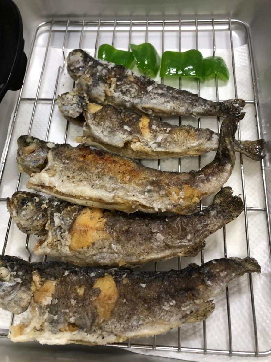 f:id:fishing_tanuki:20210427202359j:plain