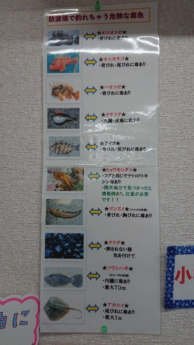 f:id:fishing_tanuki:20210501215425j:plain