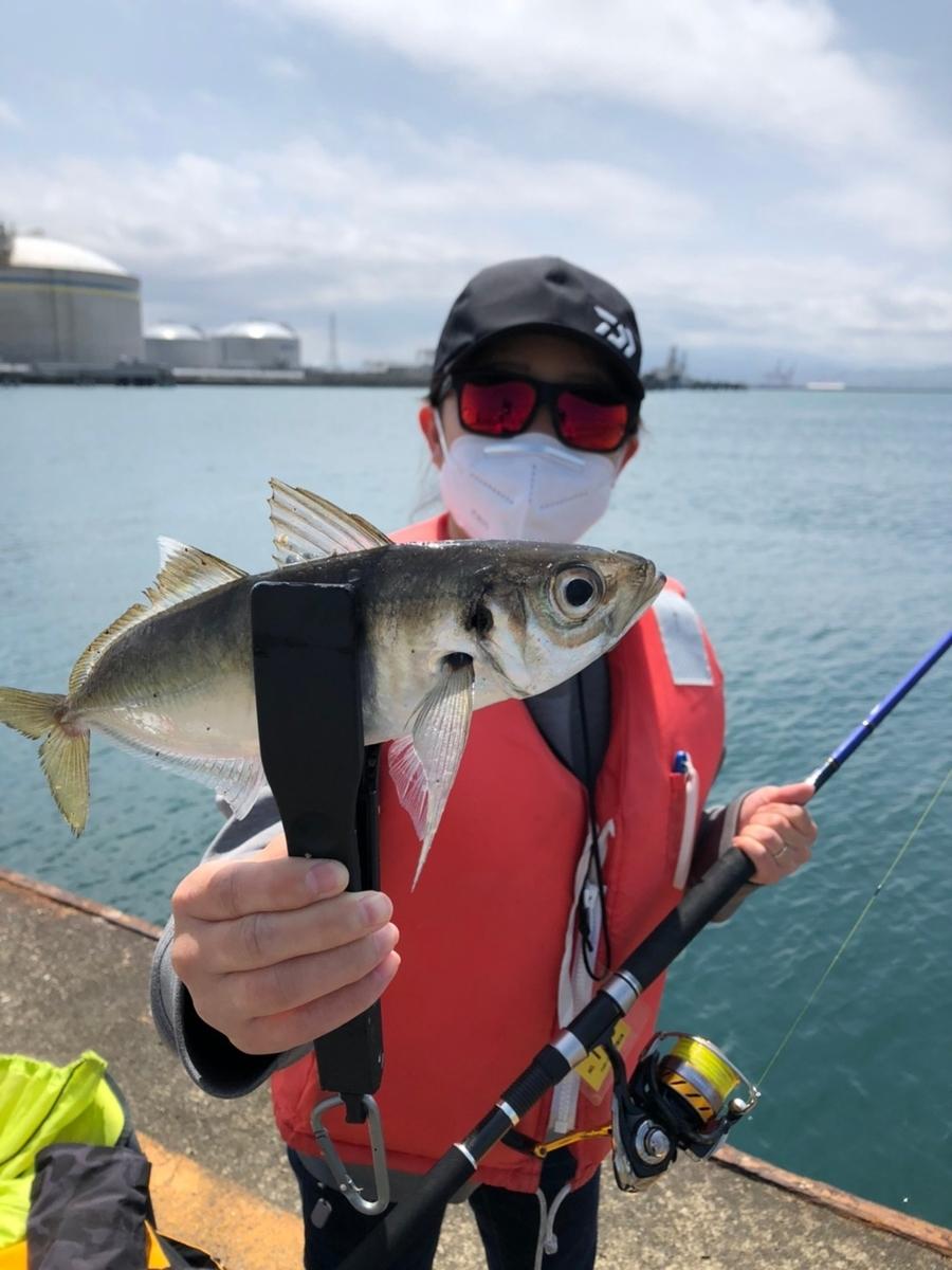 f:id:fishing_tanuki:20210506210153j:plain