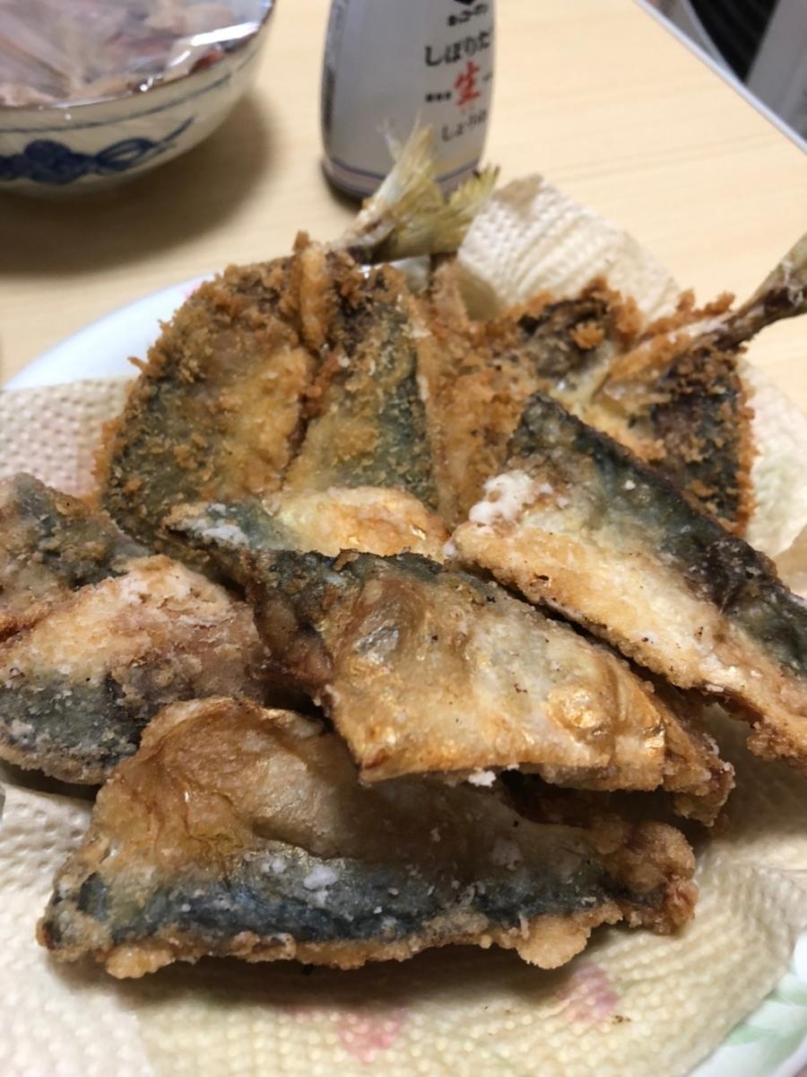f:id:fishing_tanuki:20210509165356j:plain
