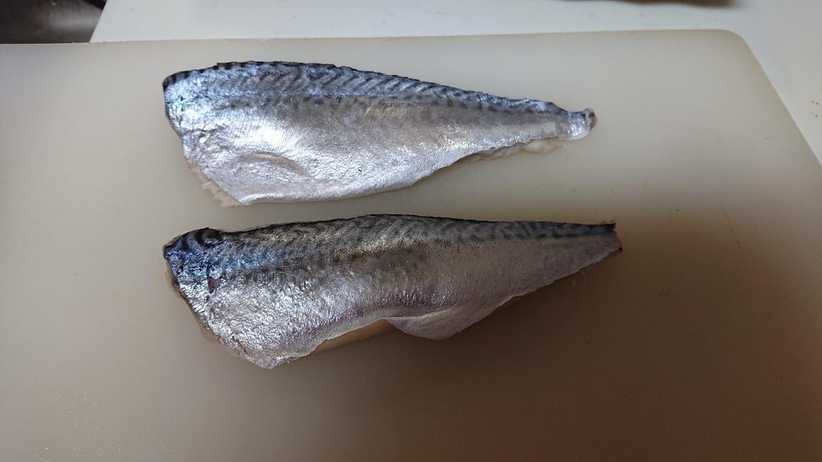f:id:fishing_tanuki:20210509165453j:plain