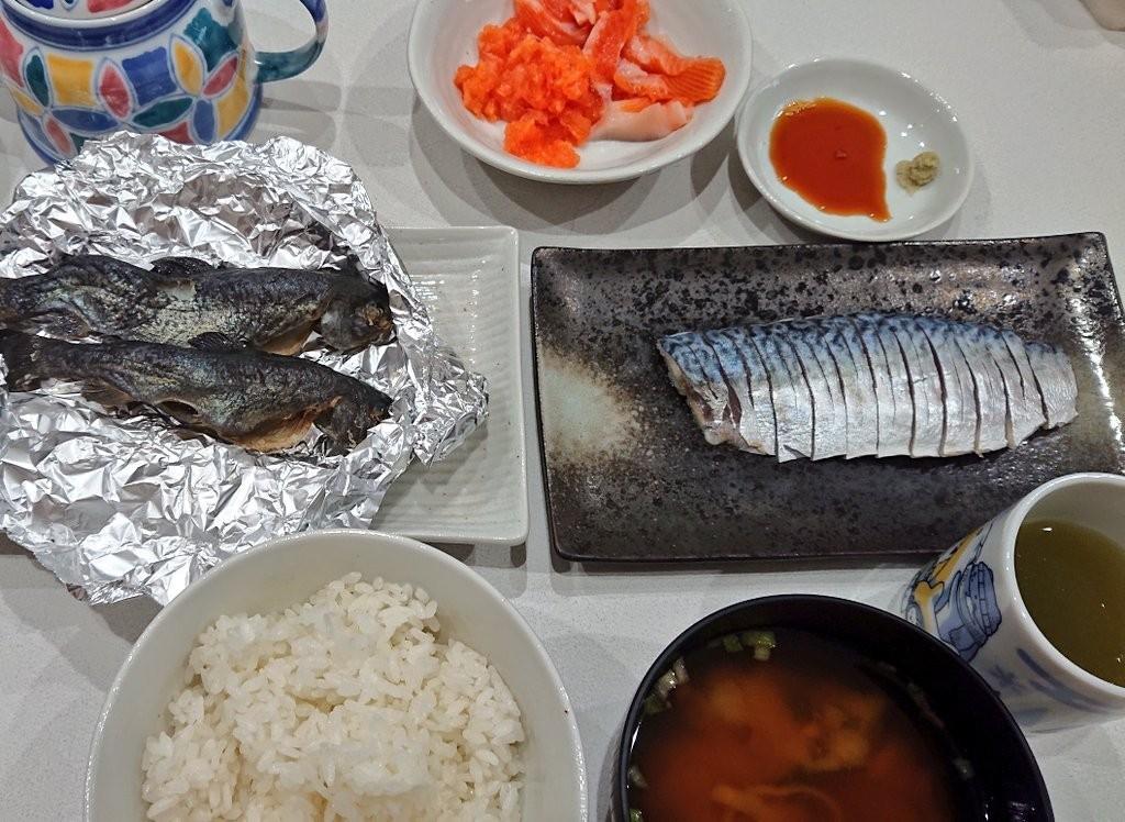 f:id:fishing_tanuki:20210517190522j:plain