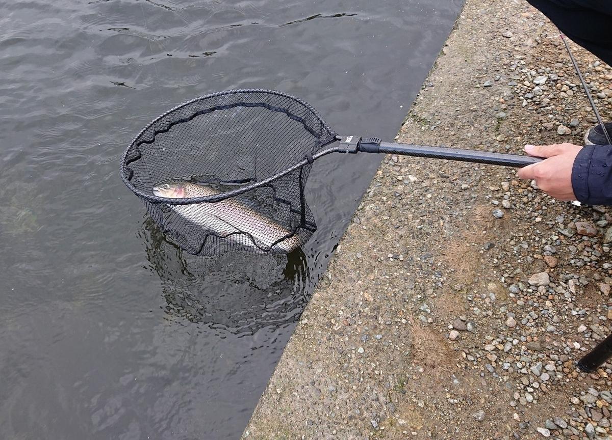 f:id:fishing_tanuki:20210526192107j:plain