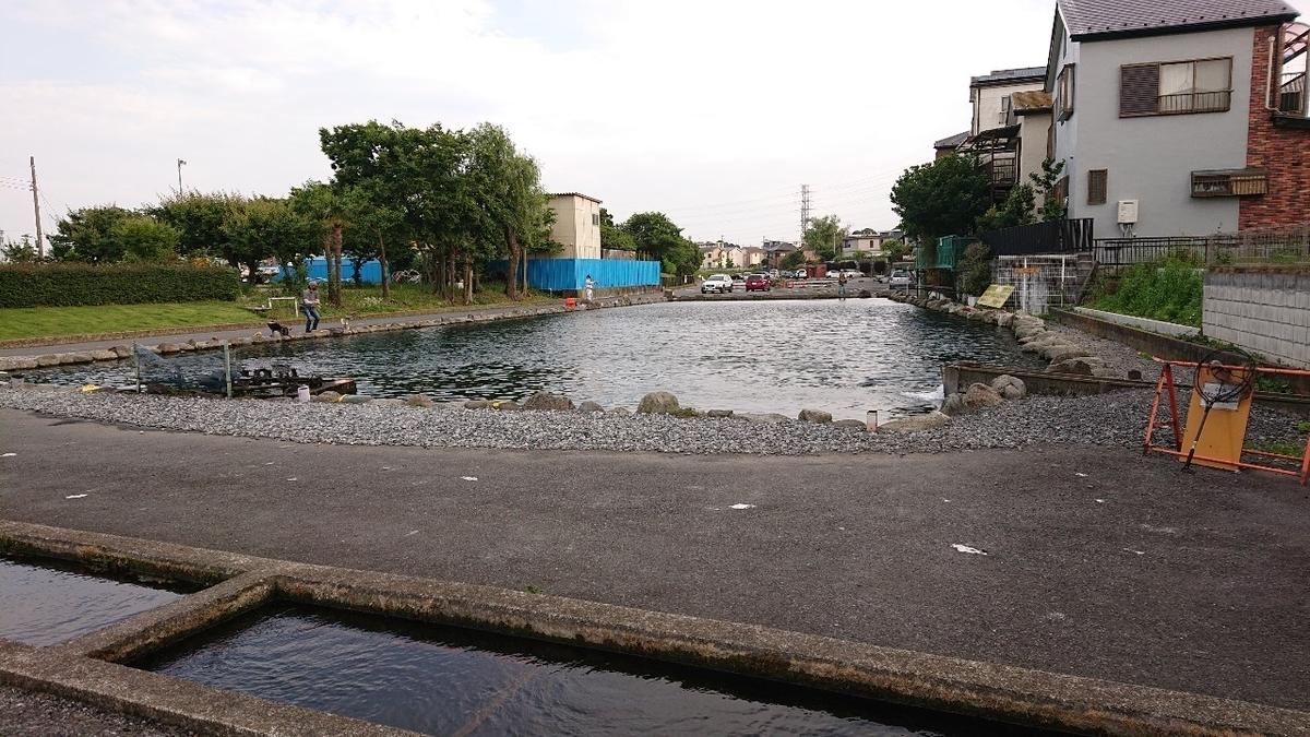 f:id:fishing_tanuki:20210601203347j:plain
