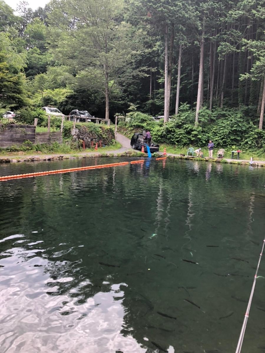 f:id:fishing_tanuki:20210615201939j:plain