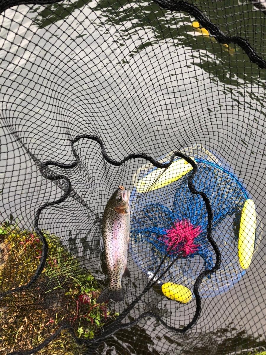 f:id:fishing_tanuki:20210615204900j:plain