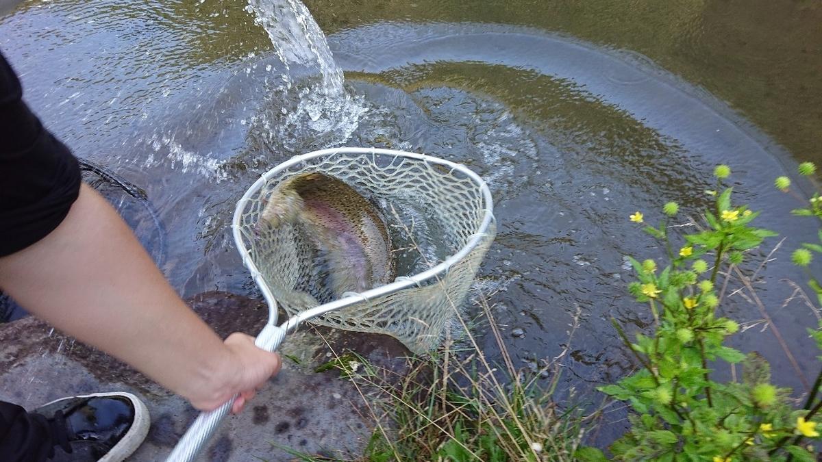 f:id:fishing_tanuki:20210727213717j:plain
