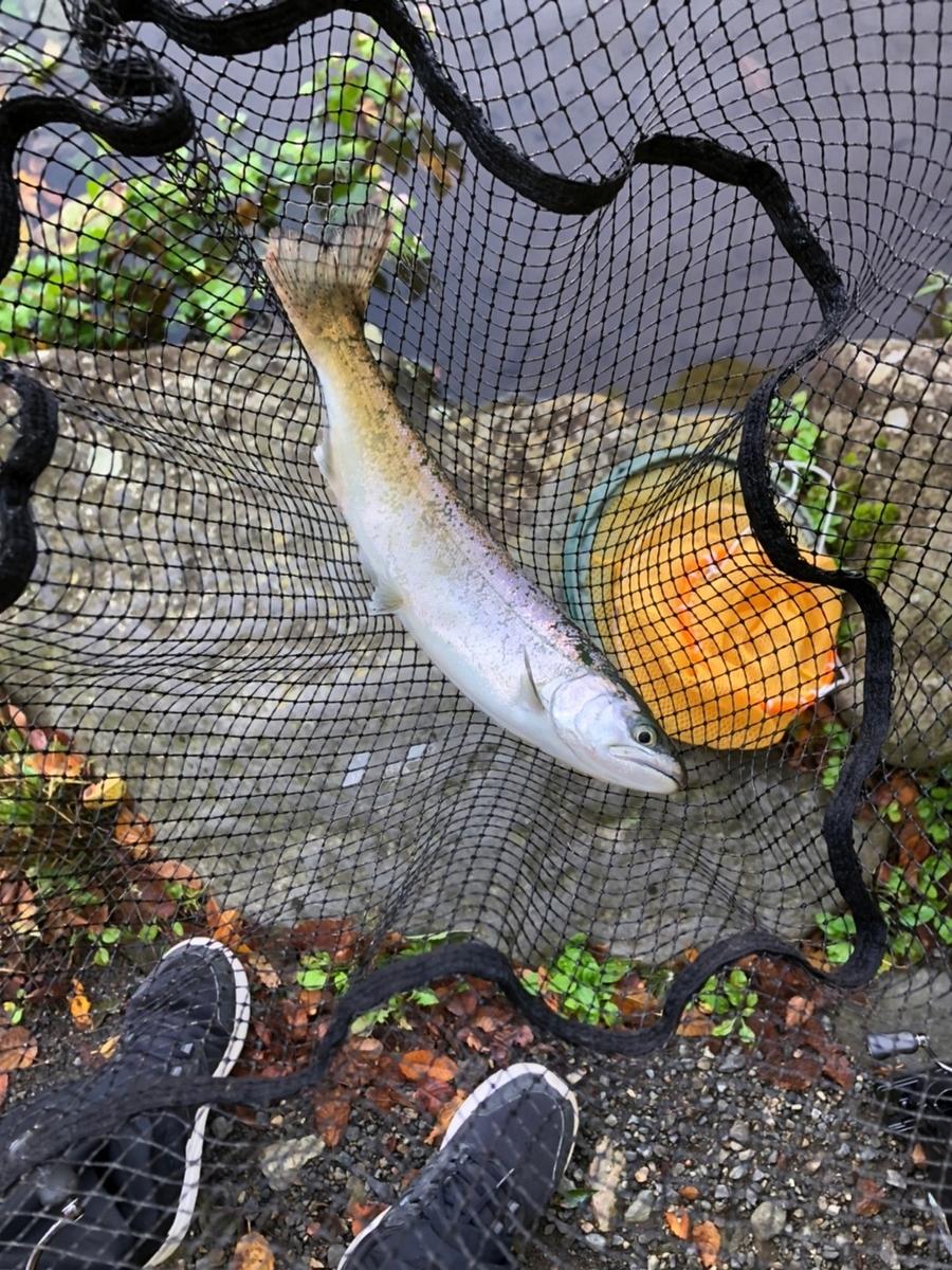 f:id:fishing_tanuki:20211005204033j:plain