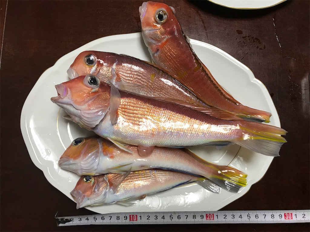 f:id:fishingandwine:20200115221532j:image