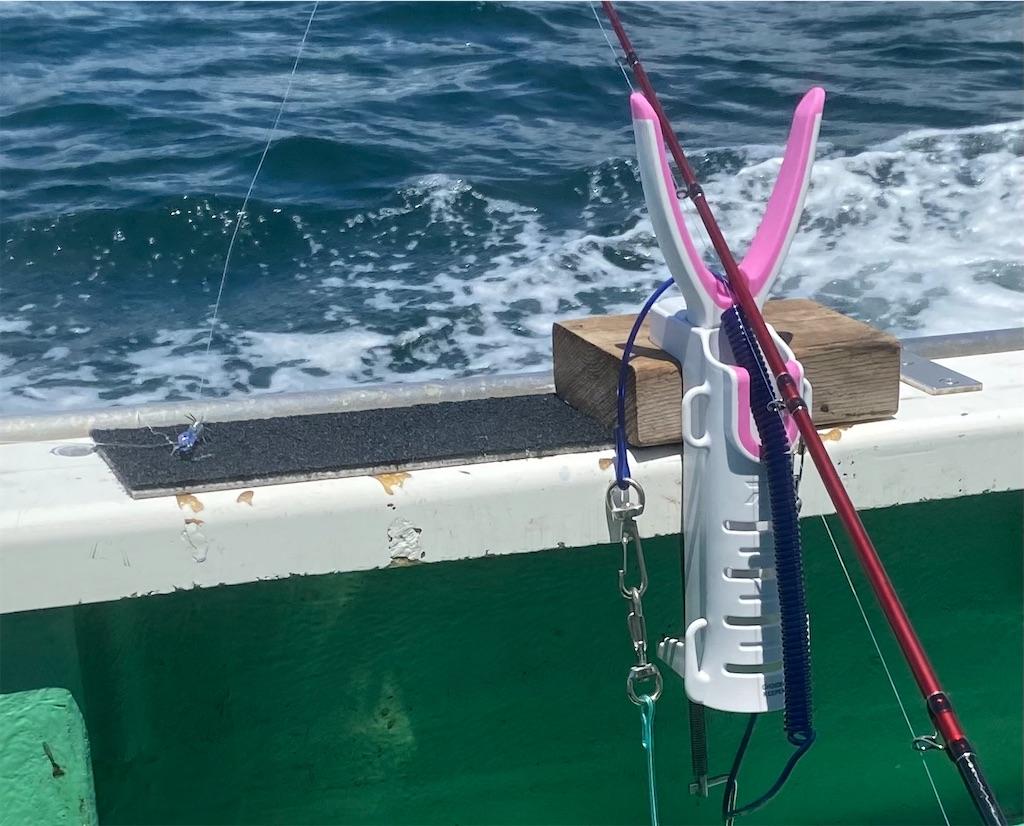 f:id:fishingandwine:20210607203746j:image