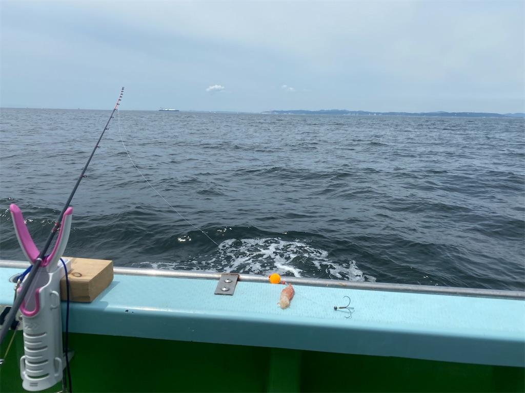 f:id:fishingandwine:20210627150809j:image